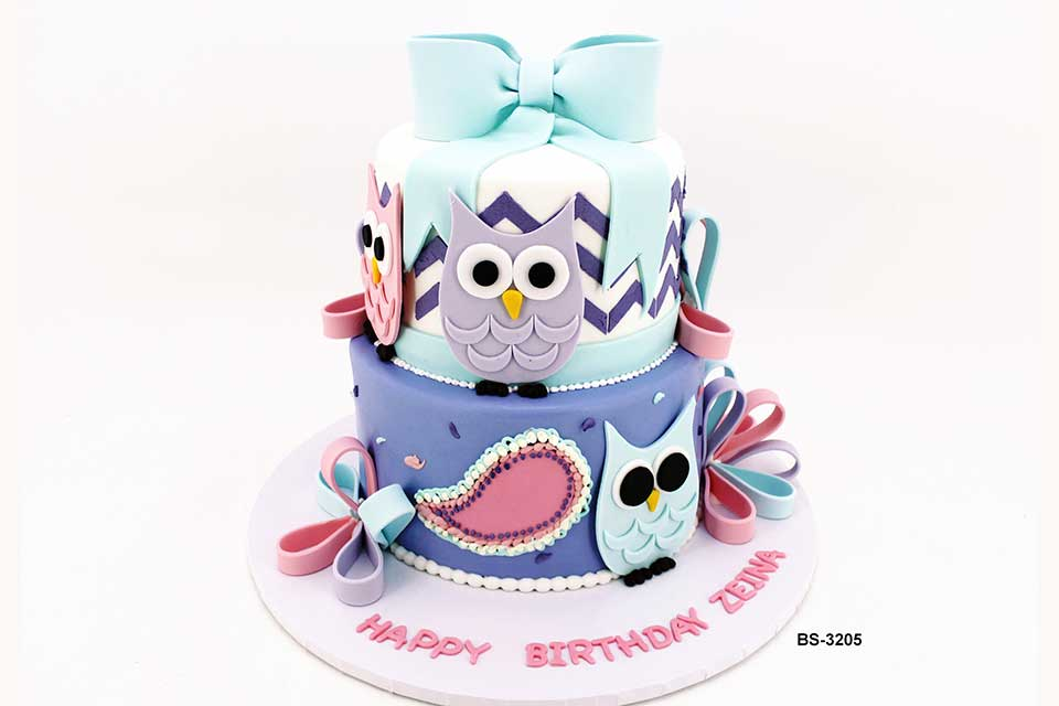 Sensational Owl Birthday Cake Bs 3205 Bee Sweet Uae Best Cakes Funny Birthday Cards Online Amentibdeldamsfinfo